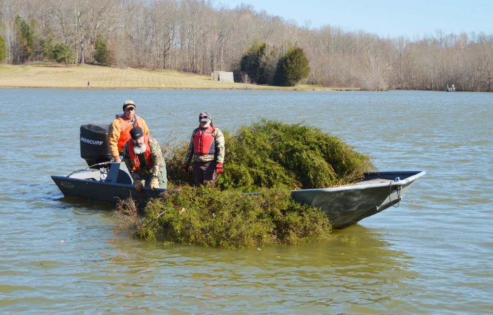 TWRA officials add brush to Cane Creek Lake.