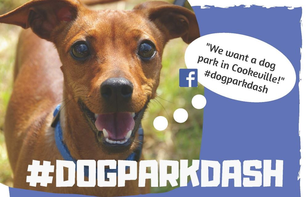 Cookeville wins dog park grant