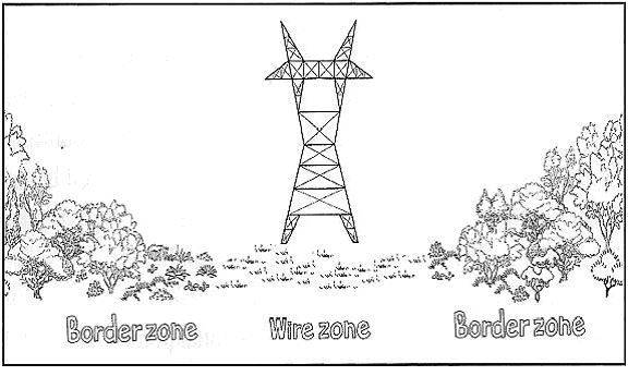 Border Zone and Wire Zone
